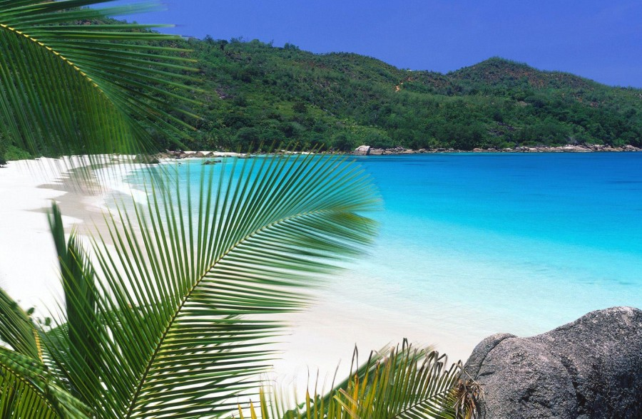 Get into the beautiful island of Con Dao to have an amazing vacation